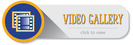 VideoGallery button